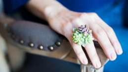 Original anillo decorado con plantas vivas.